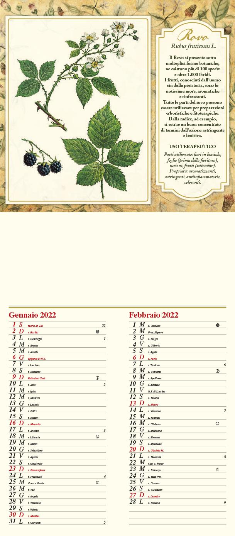 Calendario MockUp Piante